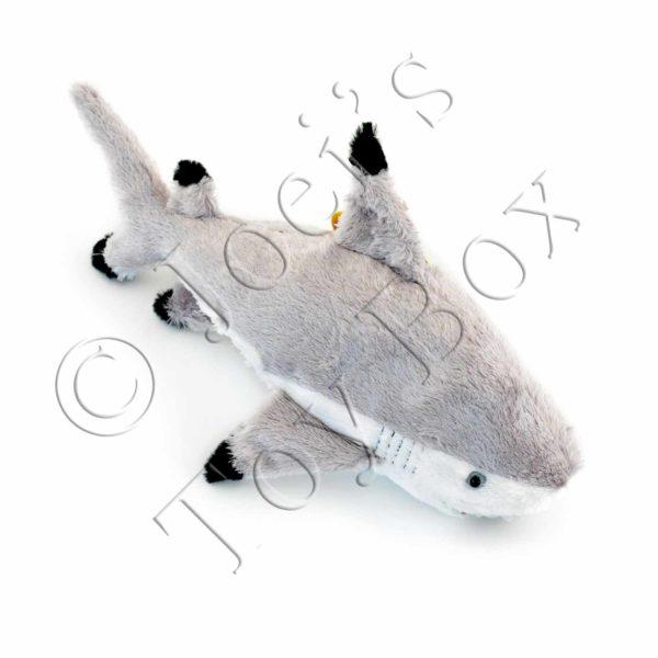 Finn-Shark-#7631-01