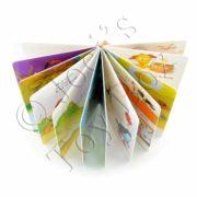 The-Nose-Book-by-Al-Perkins-Board-Book-05